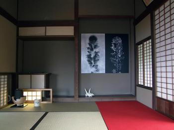 オニババドクロ茶会_3095_n.jpg