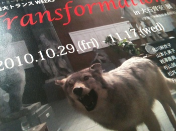 Transfomation_2467.jpg